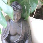 Meditation Darmstadt